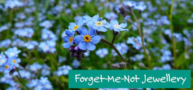 Forget-me-not Jewellery