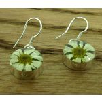Circle Daisy Silver Flower Earrings