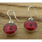 Circle Poppy Silver Flower Earrings (62)