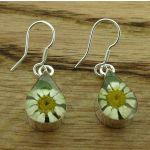 Teardrop Daisy Silver Flower Earrings