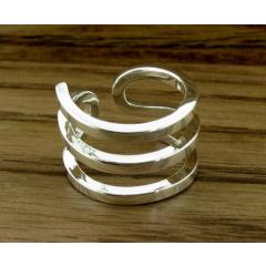 Silver Spring Ring