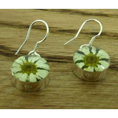 Circle Daisy Silver Flower Earrings