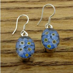 Oval Forget-me-not Silver Flower Earrings