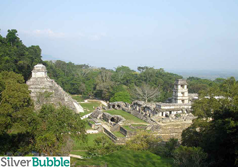 Mayan Temple with Tree of Life - Palenque